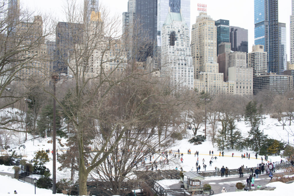 Wollman's Rink NYC
