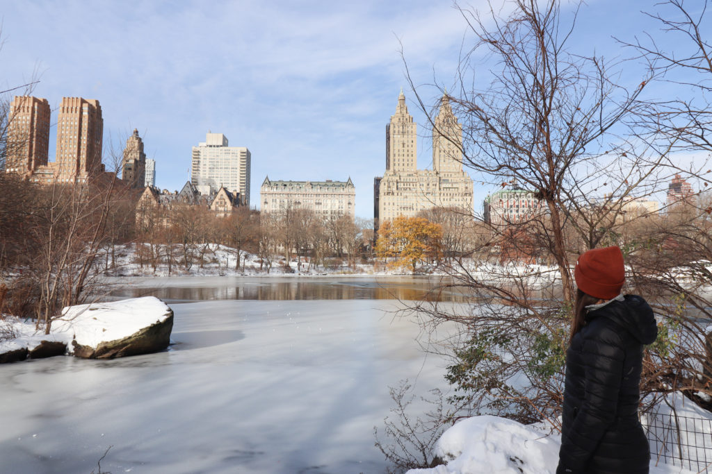 Winter Central Park New York City