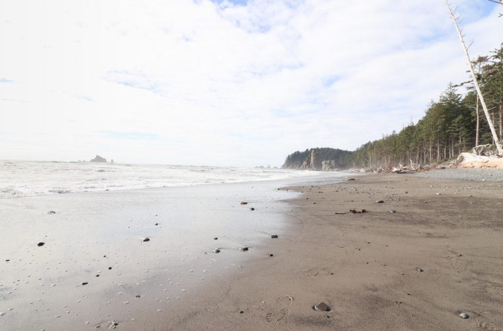 Shoreline of ONP beaches
