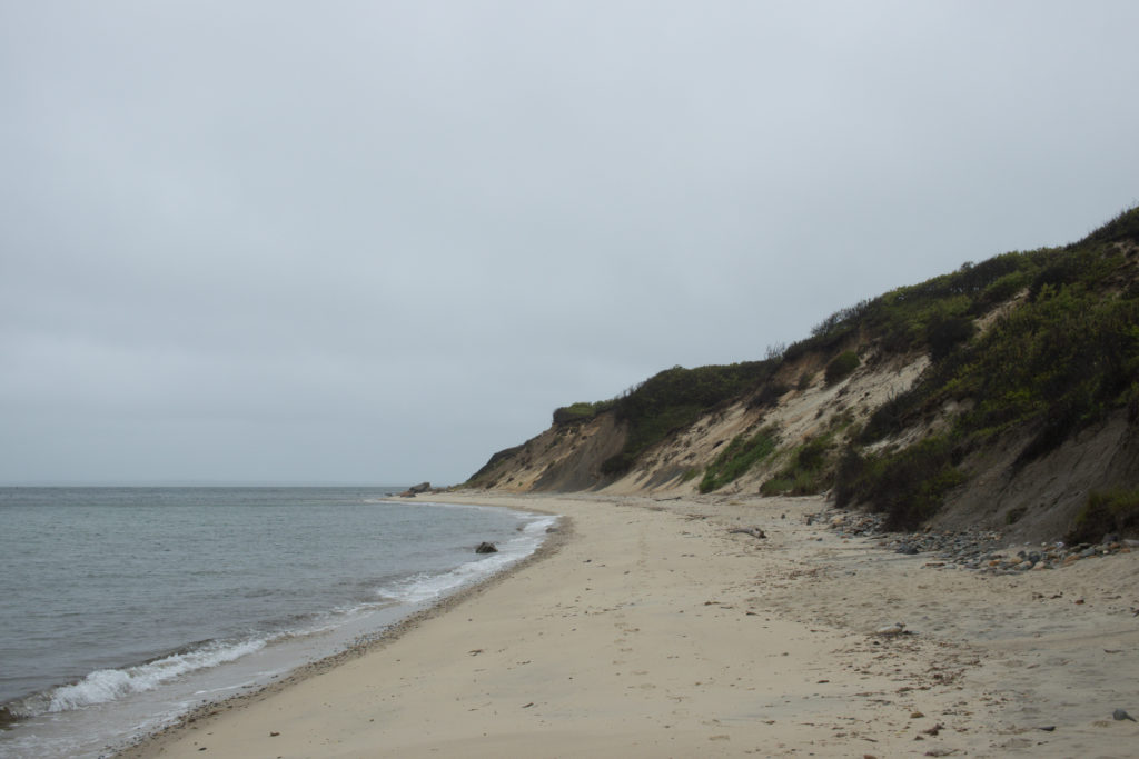 A view of the coastline at one of the Martha's Vineyard beaches