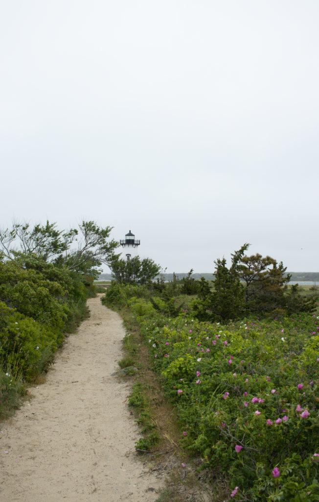 Trail to a lighthouse on Martha's Vineyard